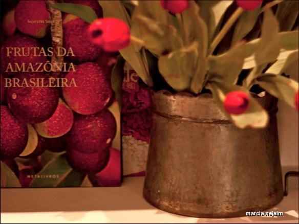livros amazonia