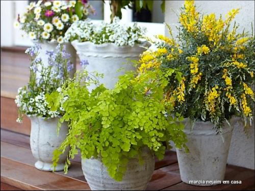 Resultado de imagem para flores lindas e jarros diferentes