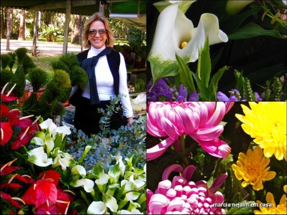 feira flores