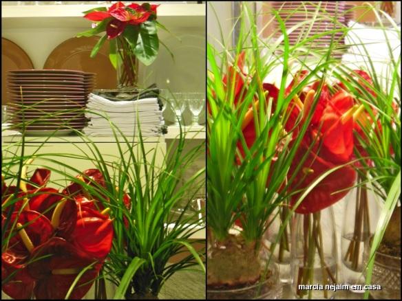 levi florais 2