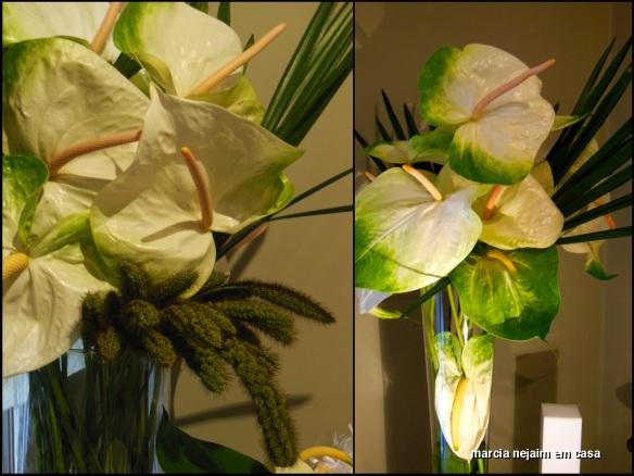 levi florais